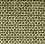695 Seaweed